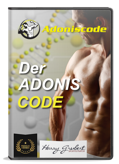 adonis code harry grubert personal trainer